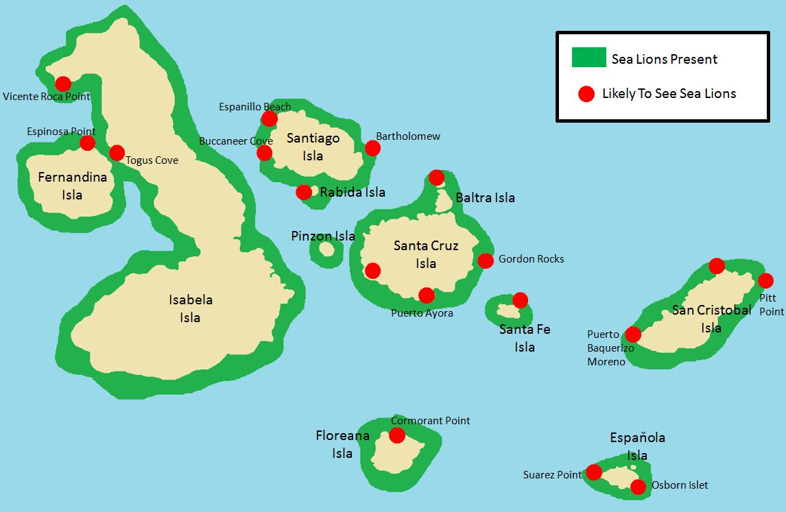 Galapagos Sea Lions.png