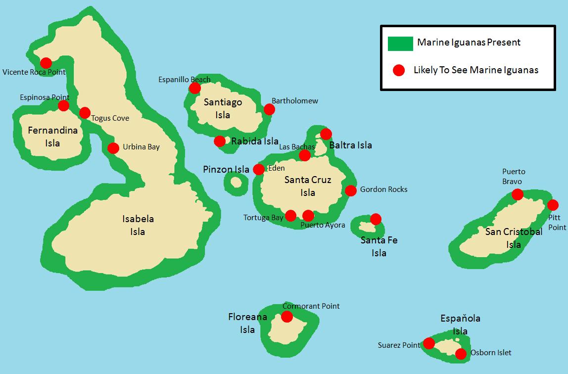 Marine Iguanas.png