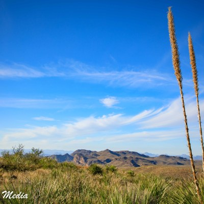 A beautiful vista inside Big Bend National Park