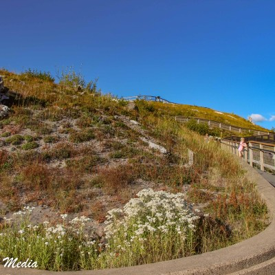 Walking path to viewpoint in Mount St. Helens National Volcanic Monument