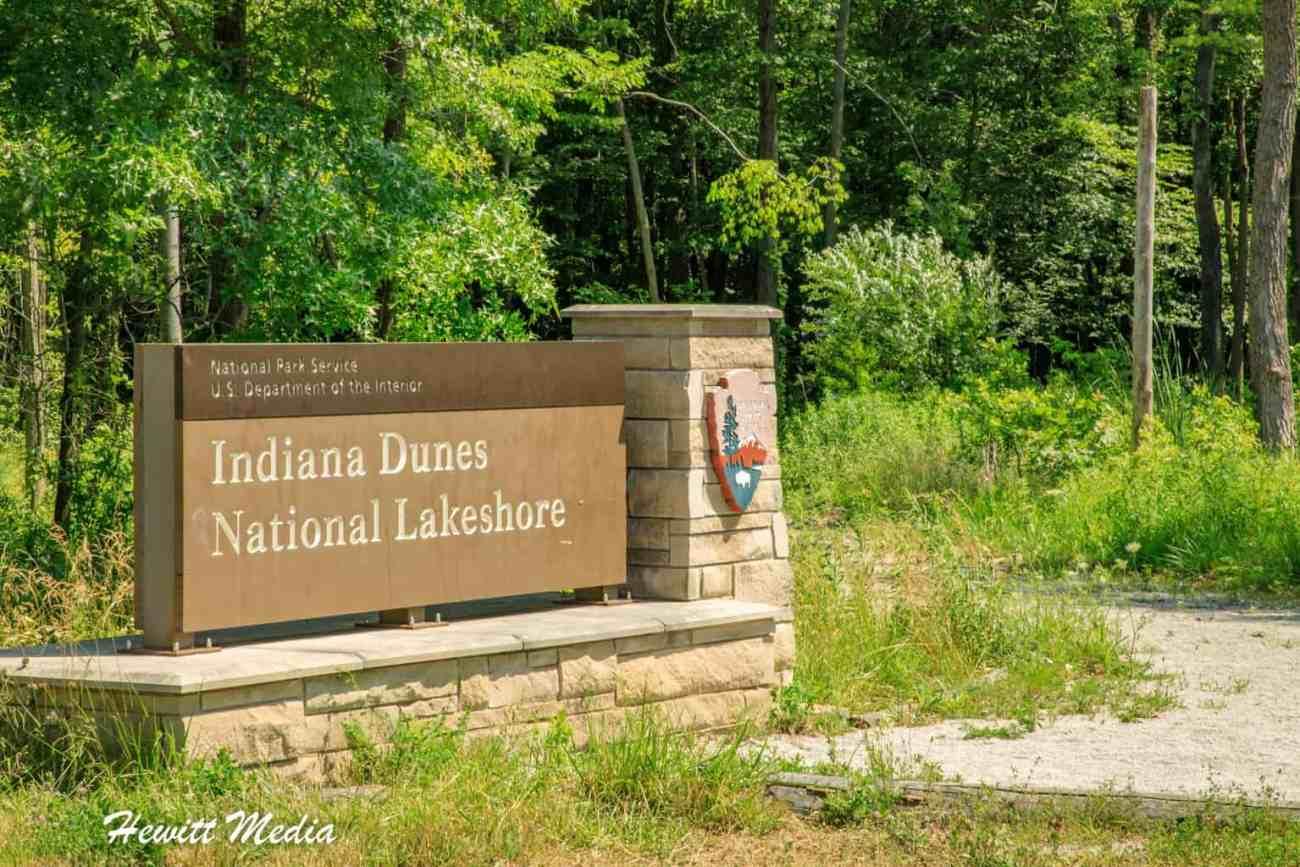 Indiana Dunes National Park-1708