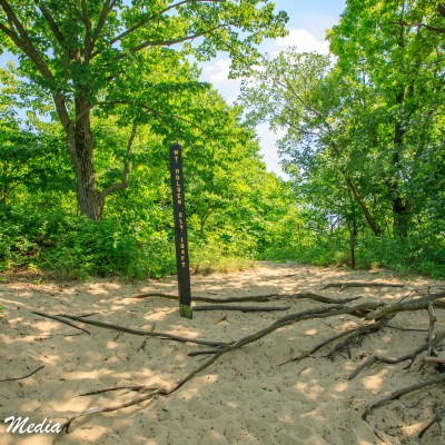 The 3 Dunes Challenge Hike