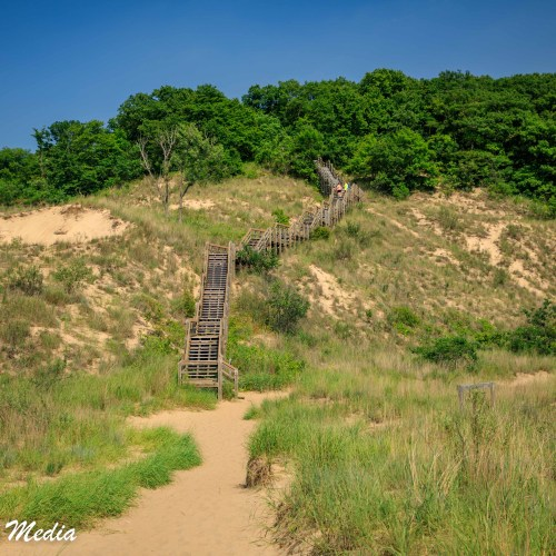 Dune Succession Trail in Indiana Dunes National Park