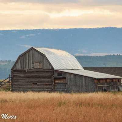 Barn near Mormon Row