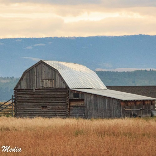 Barn near Mormon Row