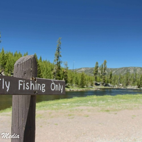 Fishing in Yellowstone