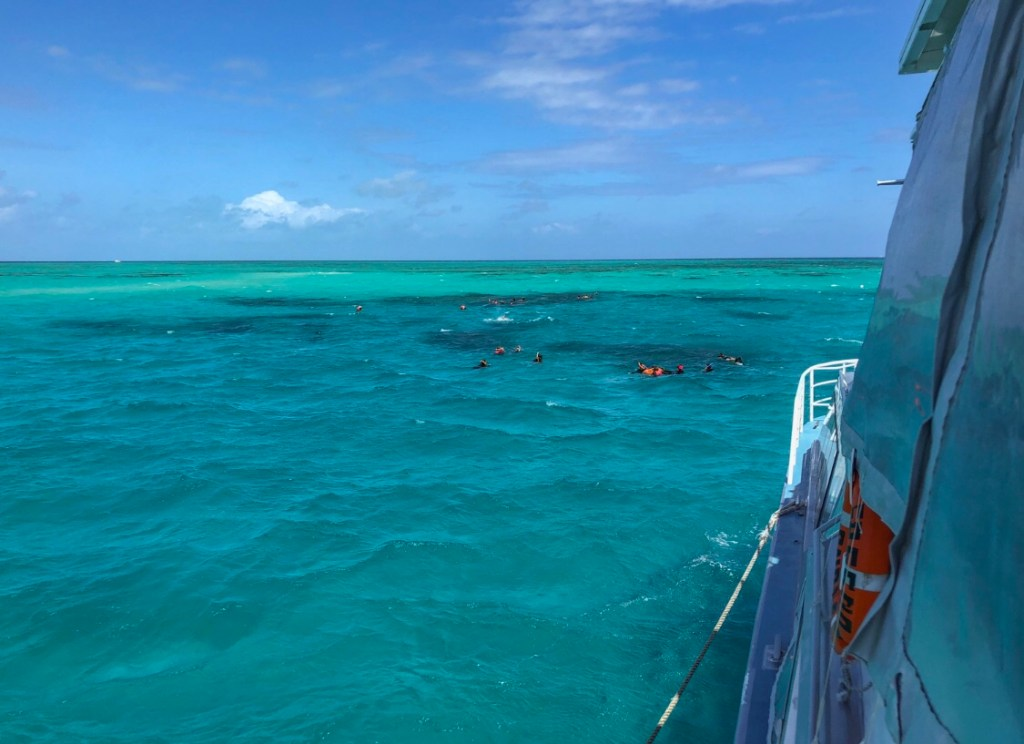 Travel Journal (9/20/2019):  Snorkeling and Diving the Great Barrier Reef