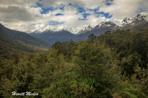 The Ultimate Milford Track Hiking Guide