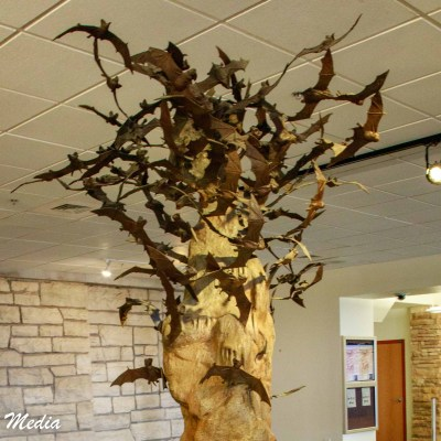 Carlsbad Caverns Visitor Center