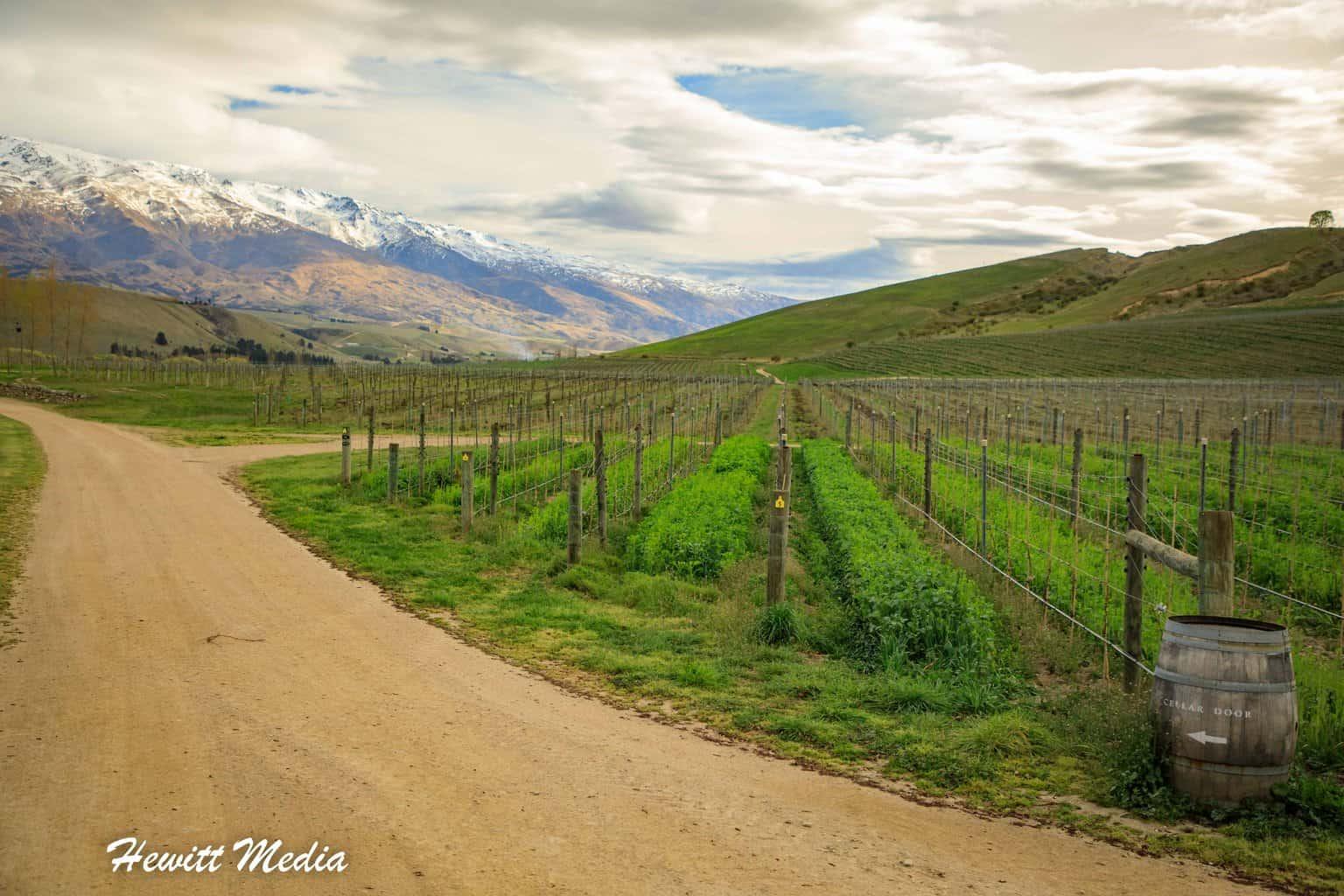 New Zealand Central Otago Wine