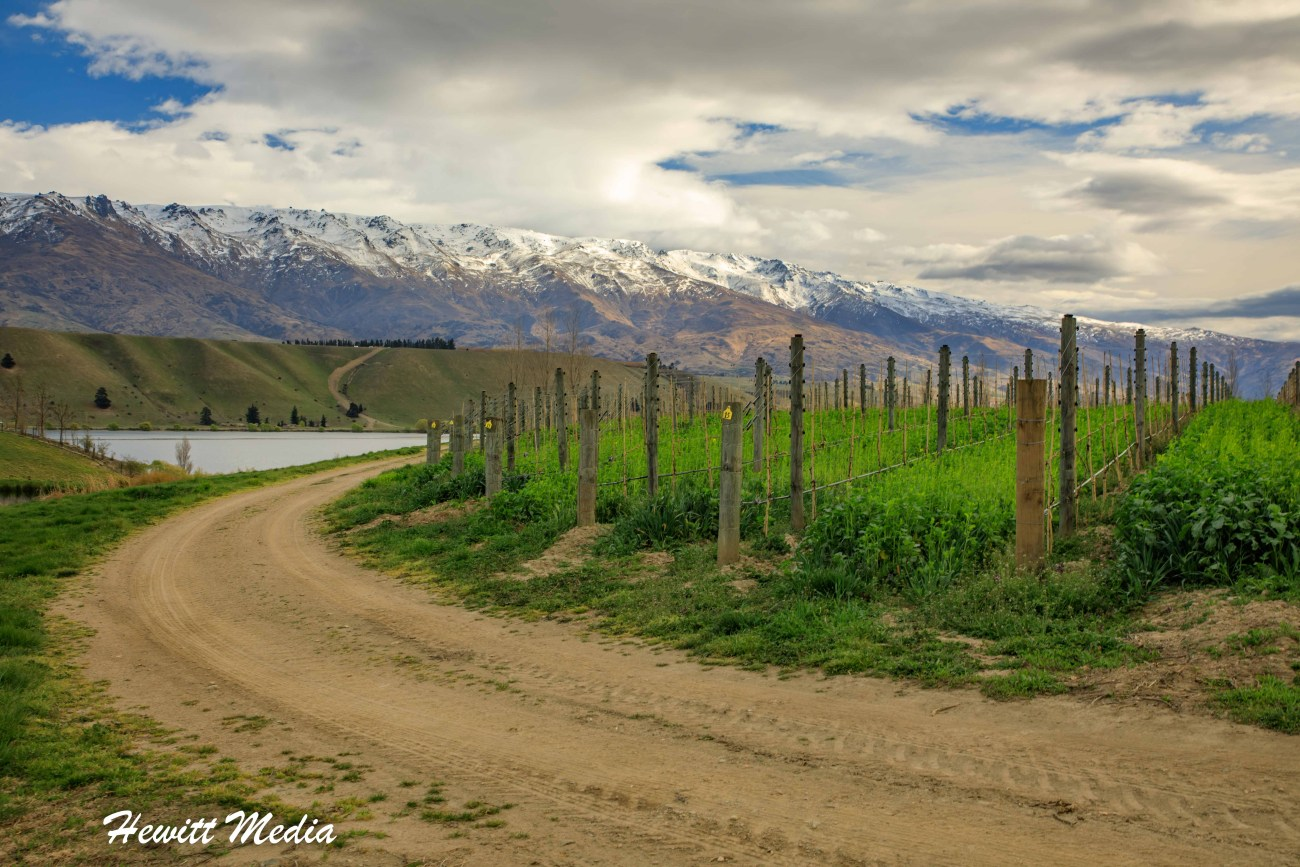 Central Otago Wine Tour-3740