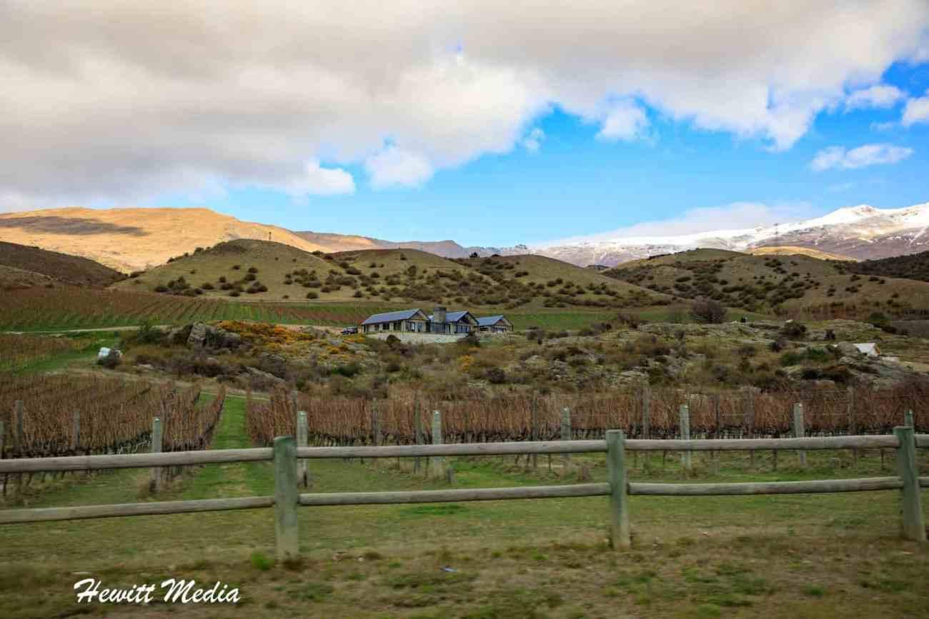 Central Otago Wine Tour-3804