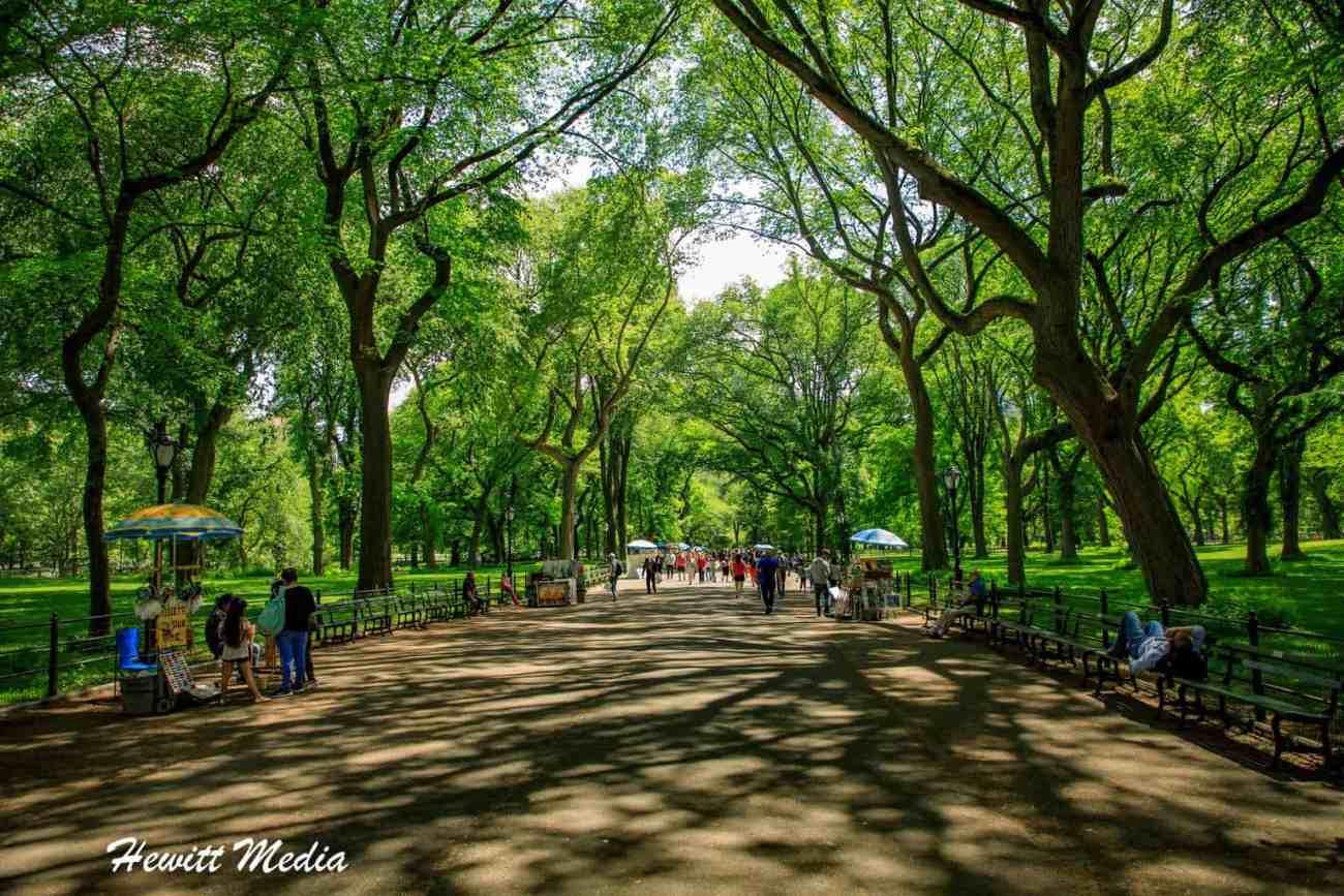 Central Park-7558.jpg