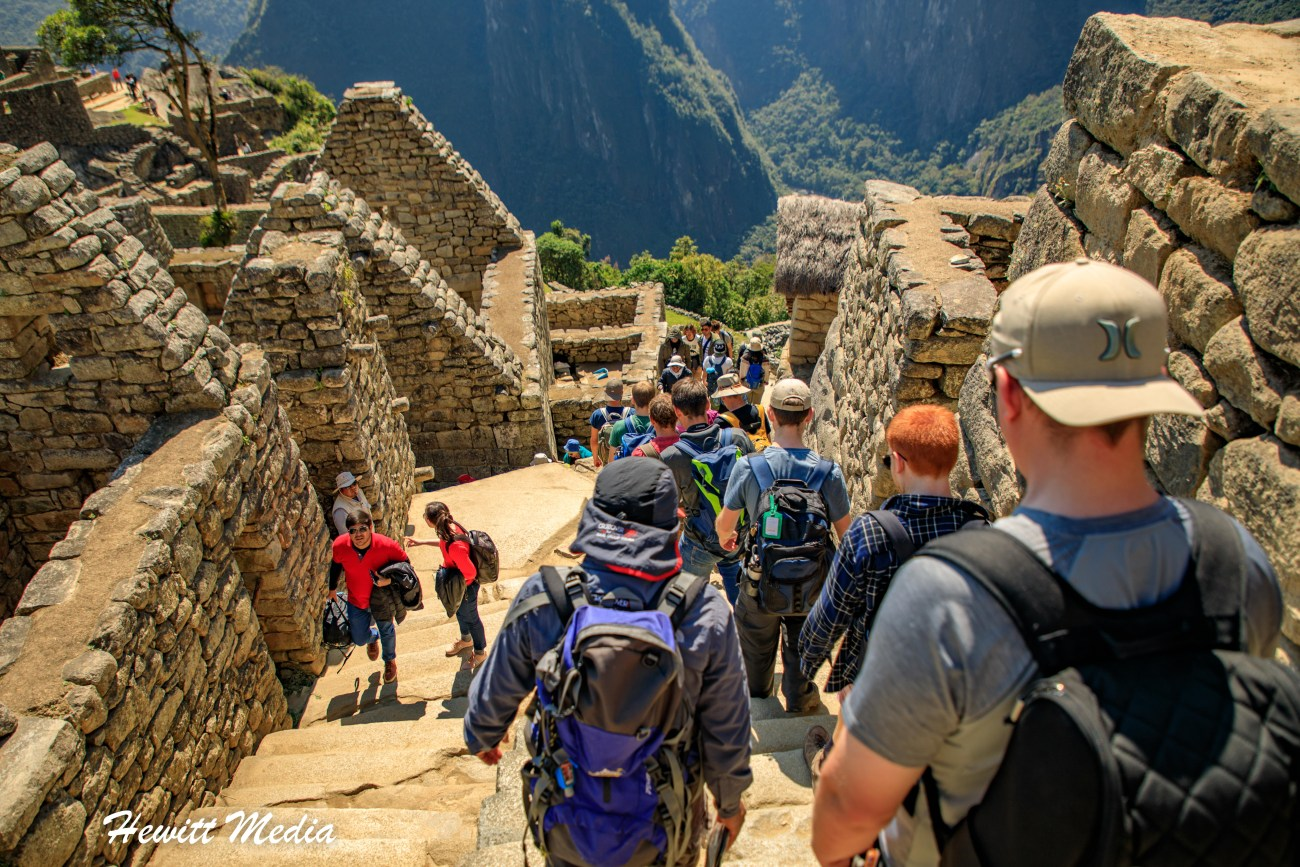 Machu Picchu-8667