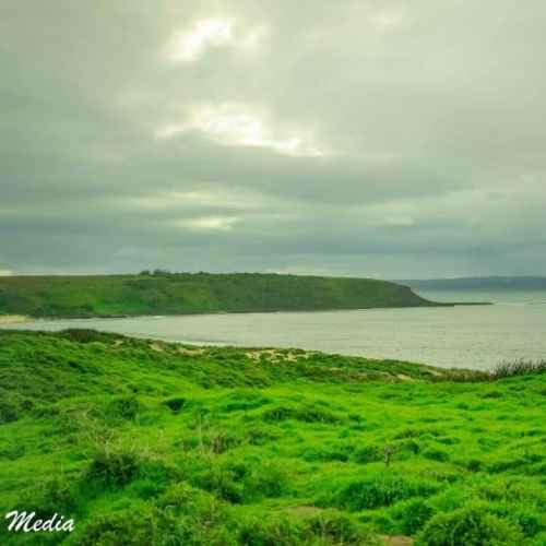 Philip Island-3103