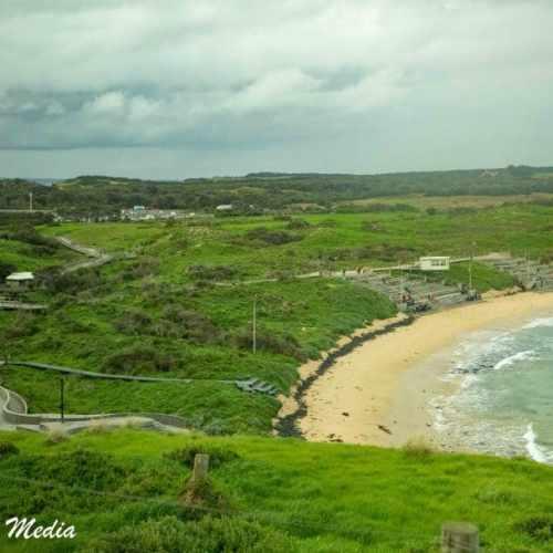 Philip Island-3165
