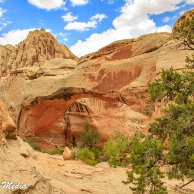 Capitol Reef National Park-1205