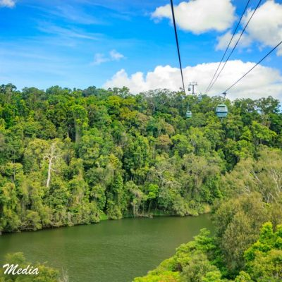 Kuranda Rainforest-2409
