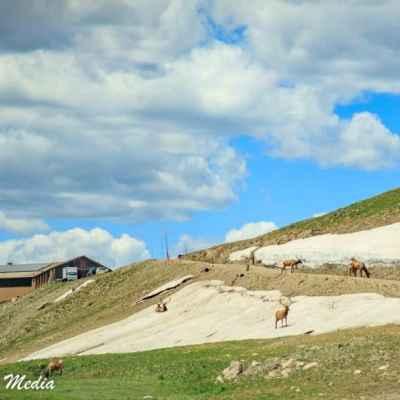 Rocky Mountain National Park-5786