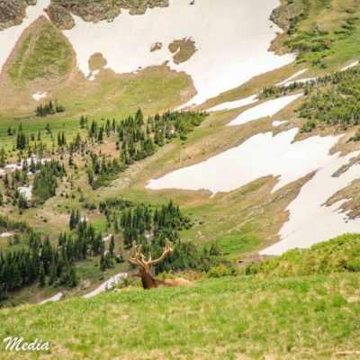 Rocky Mountain National Park-5798