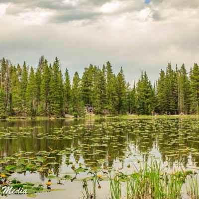 Rocky Mountain National Park-5903