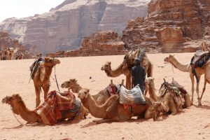 Egypt, Jordan, and Israel Middle East Trip Planning