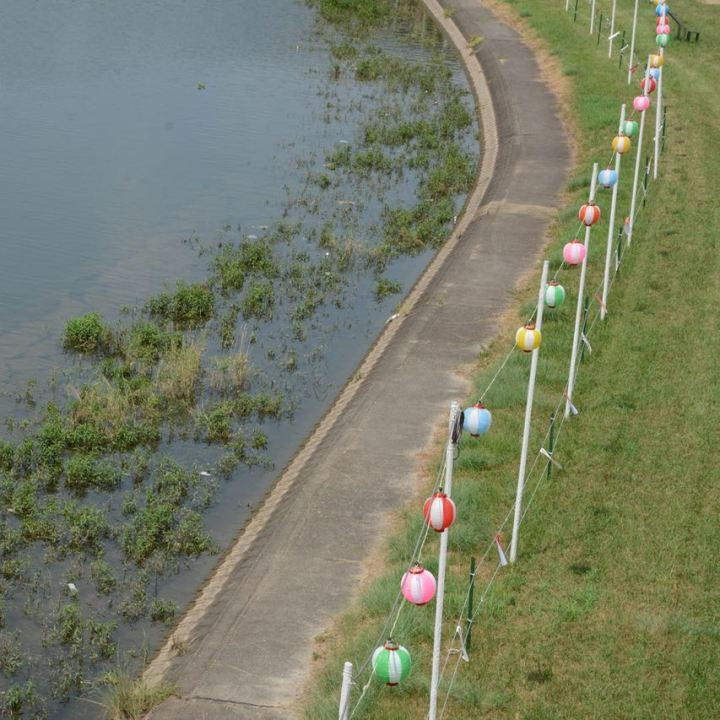 Okayama korakuen garden lanterns river asahi