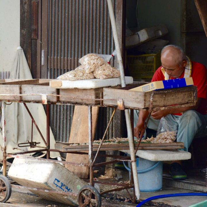 Tomonoura japan port local fisherman at work