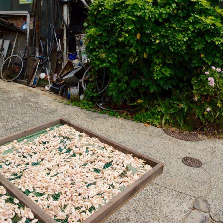 Tomonoura Port, Japan | The Seaside Town that inspired Hayao Miyazaki's Film Ponyo