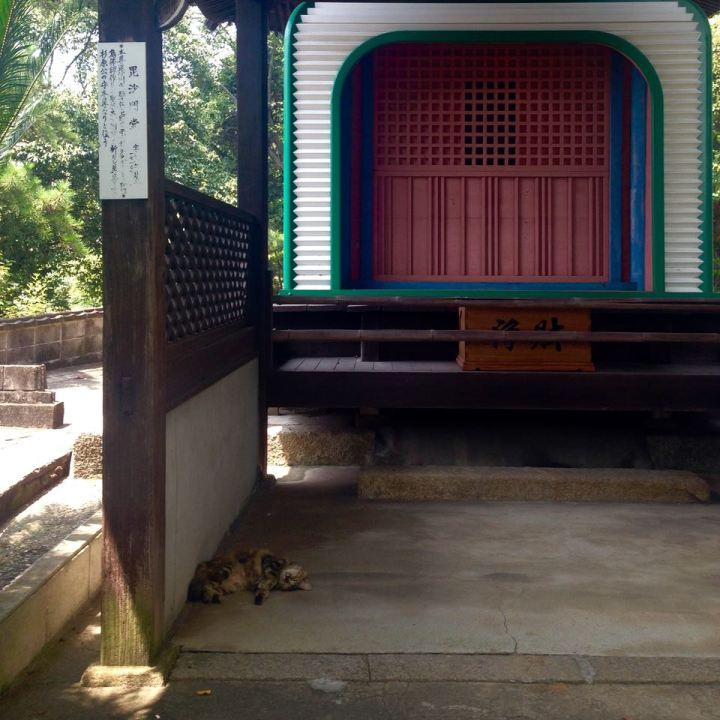 onomichi temple walk cat walk