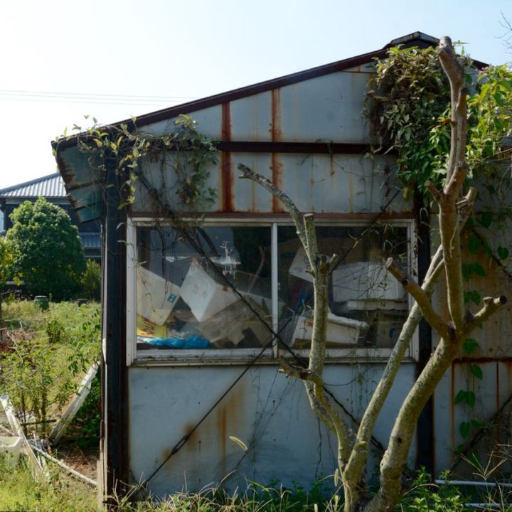 teshima ieura overgrown house architecture