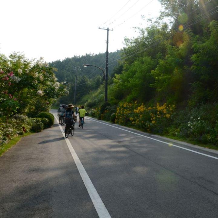 naoshima honmoura setouchi tirennale cyclists