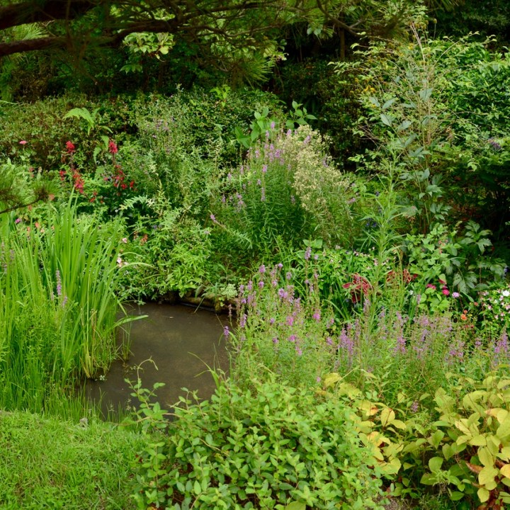 naoshima honmoura setouchi tirennale garden