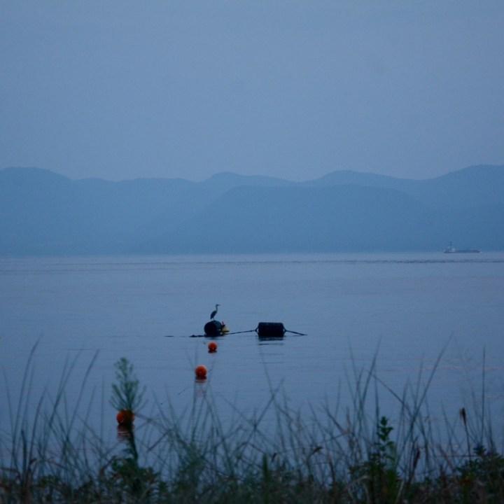 naoshima honmoura setouchi tirennale crane
