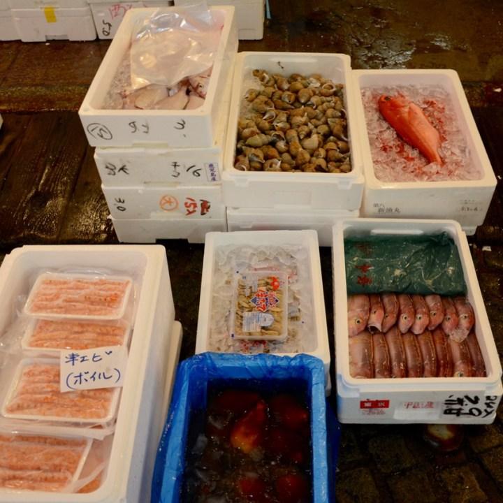Tsukiji tokyo fish market boxes