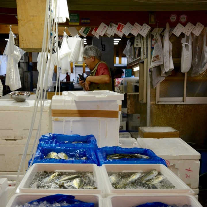 Tsukiji tokyo fish market customer