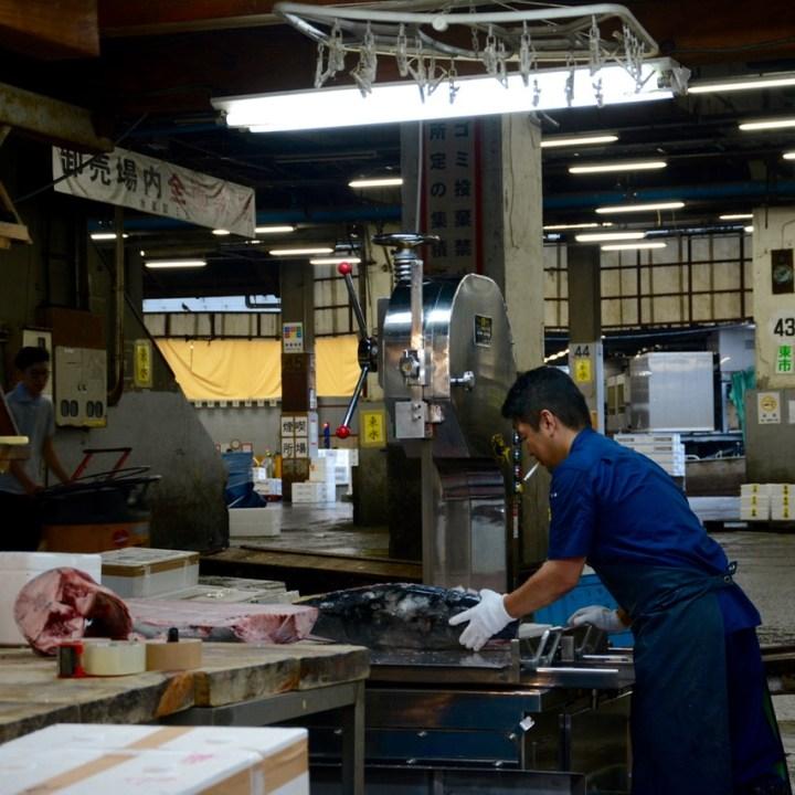 Tsukiji tokyo fish market tuna cutting