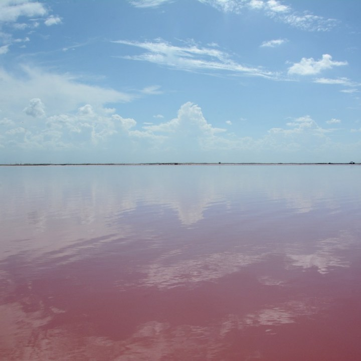 Las Coloradas, Mexico | Where to Find and How to Visit The Wonderful Pink Salt Lakes of Las Coloradas