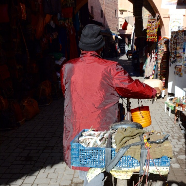 Travel with children kids Marrakesh morocco medina fish