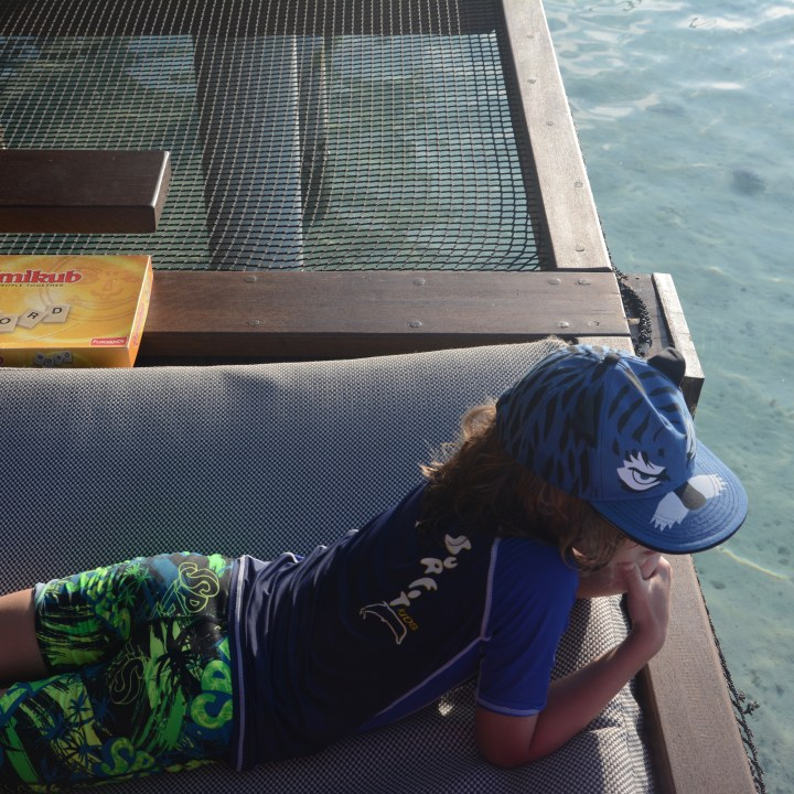 travel with children kids maldives lux south ari atoll shark feeding