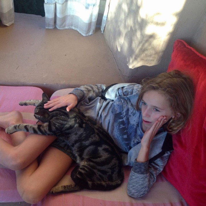 travel with kids children morocco marrakech hotel caravanserai cat