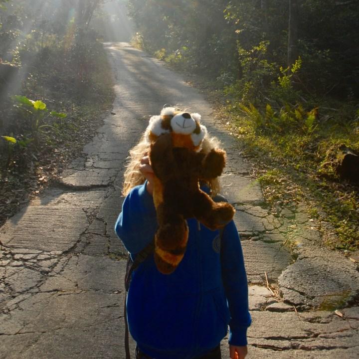 travel with kids children hong kong lantau big buddha red panda