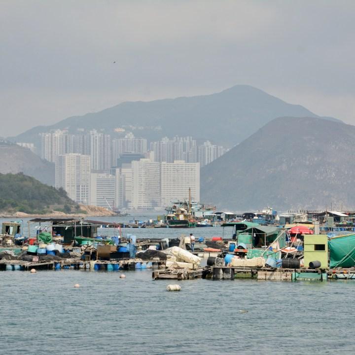 travel hong kong with kids children lamma island sok kwu fisherman