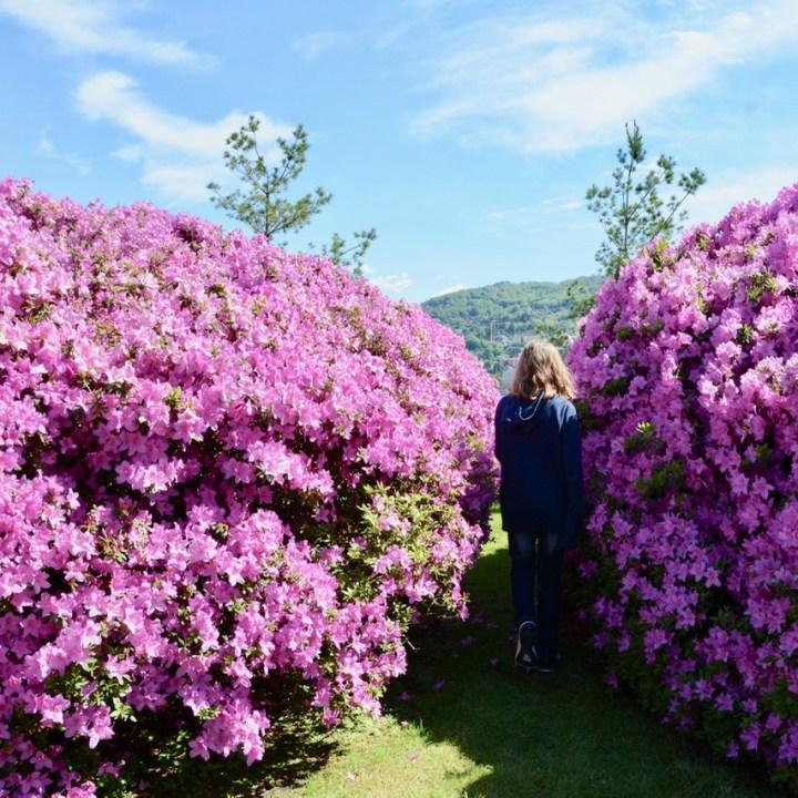 travel with kids children isola bella lago maggiore italy palazzo borromeo garden azalea