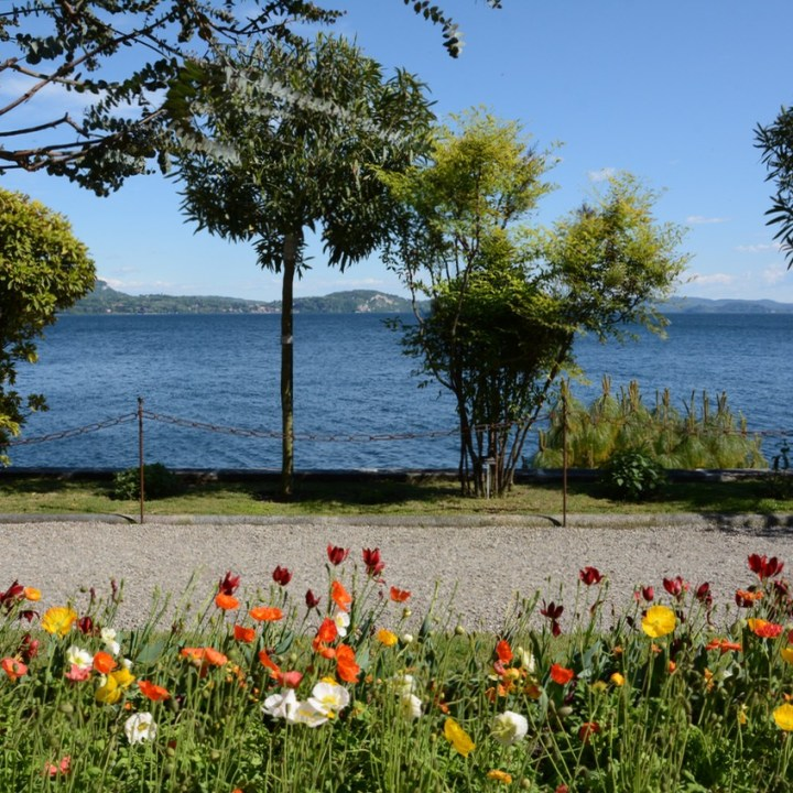 travel with kids children isola madre lago maggiore italy garden poppies