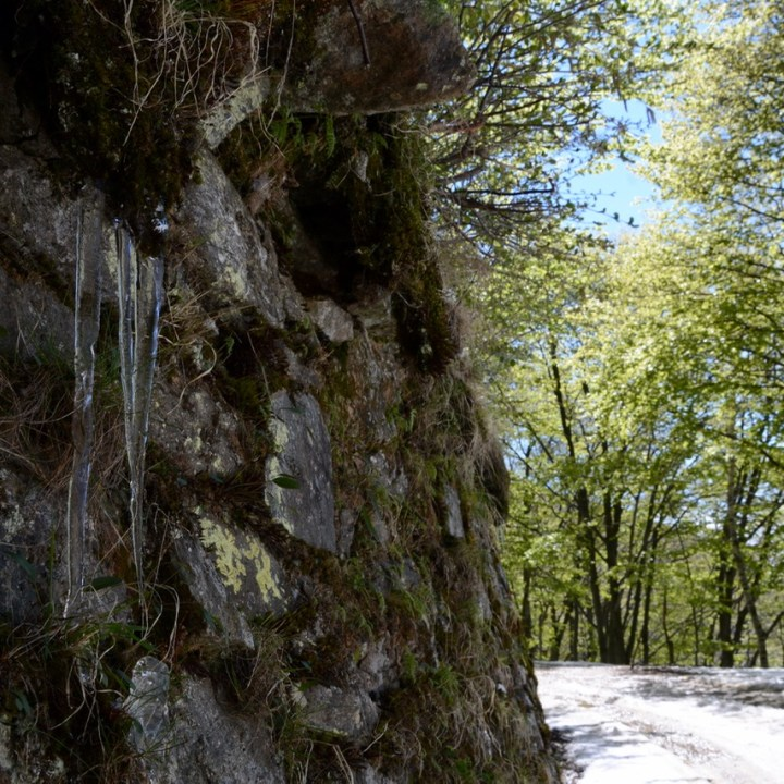 travel with kids children mount spalavera lago maggiore hiking icicles