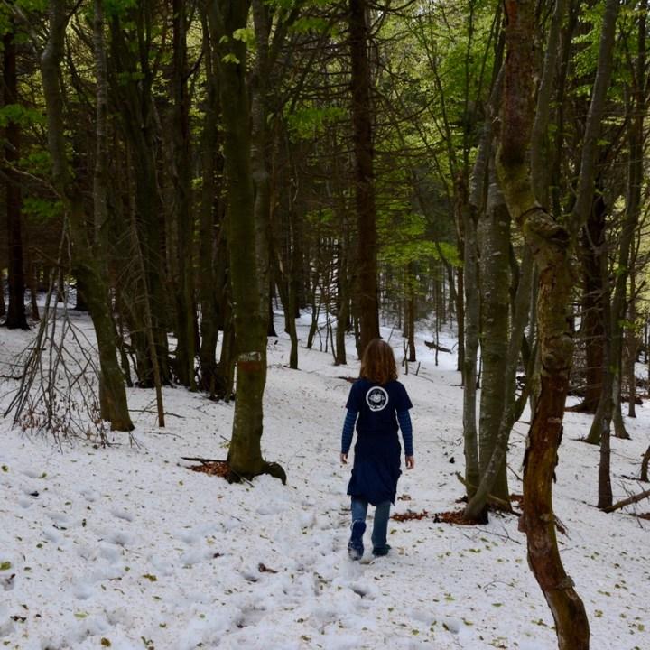 travel with kids children mount pian bello lago maggiore italy hiking trail