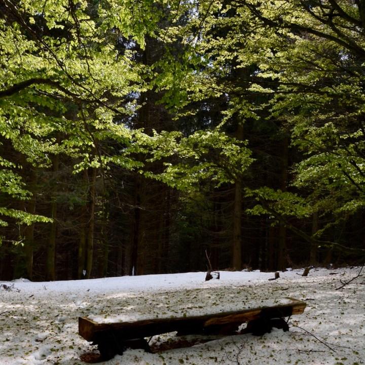 travel with kids children mount pian bello lago maggiore italy hiking bench