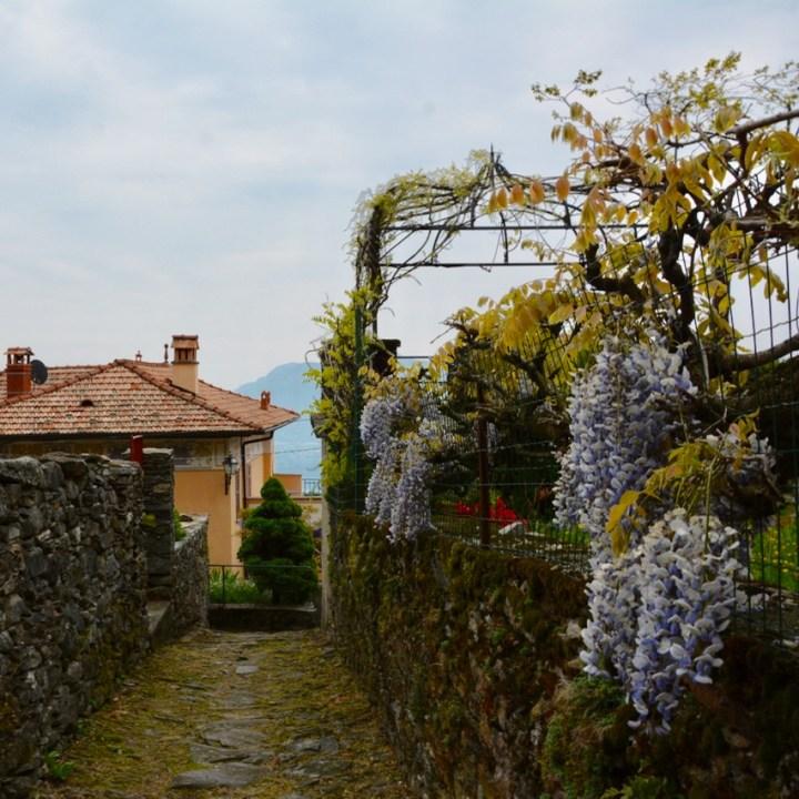 travel with kids children trarego viggiona lago maggiore italy gardens