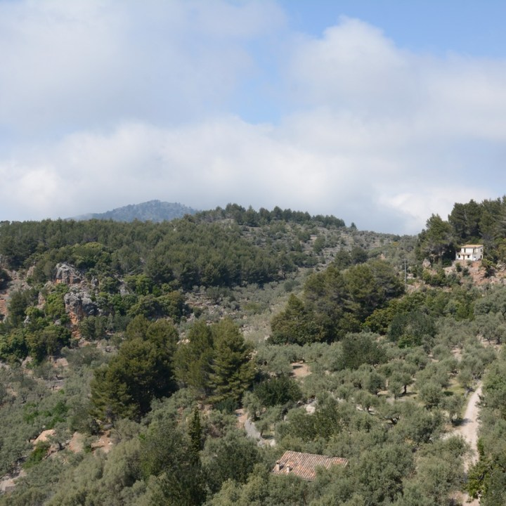 travel with kids children soller mallorca spain mirador ses barques view